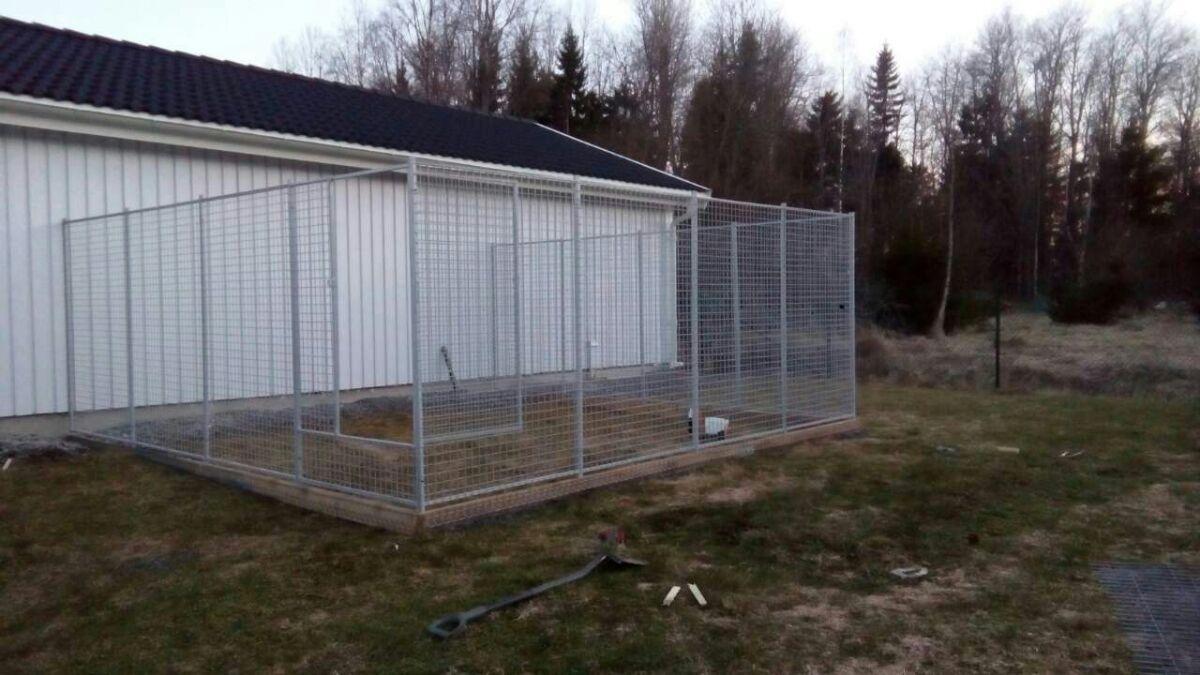 Hundgård Piteå