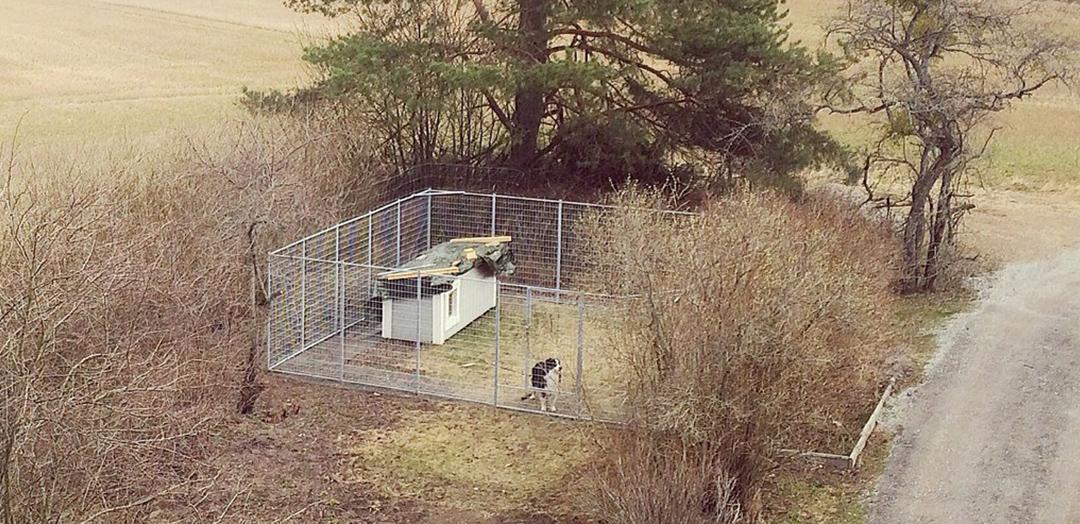 Hundgård Västervik